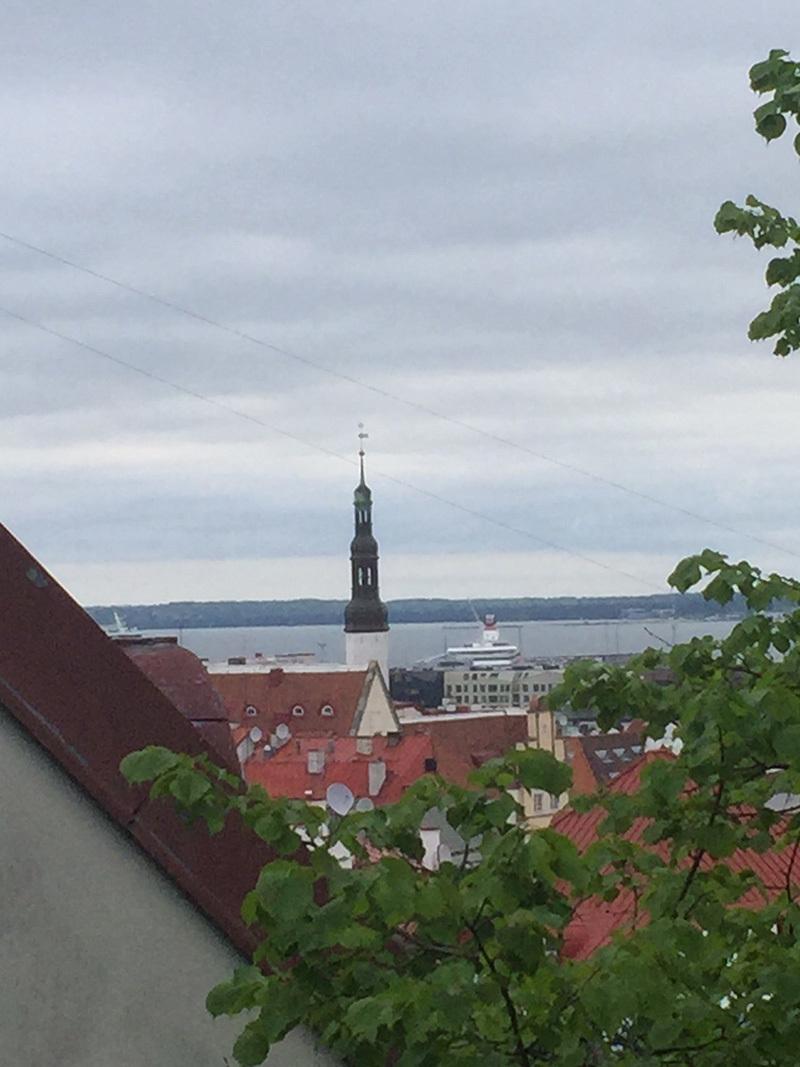 tallin_estonia5.jpg